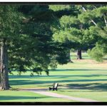 Lincoln Golf Club - Gallery Image 3
