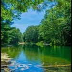 Clear Springs Nature Preserve - Gallery Image 1