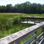 Henderson Road Nature Center & Disc Golf Course - Gallery Image 1