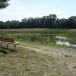 Henderson Road Nature Center & Disc Golf Course - Gallery Image 2